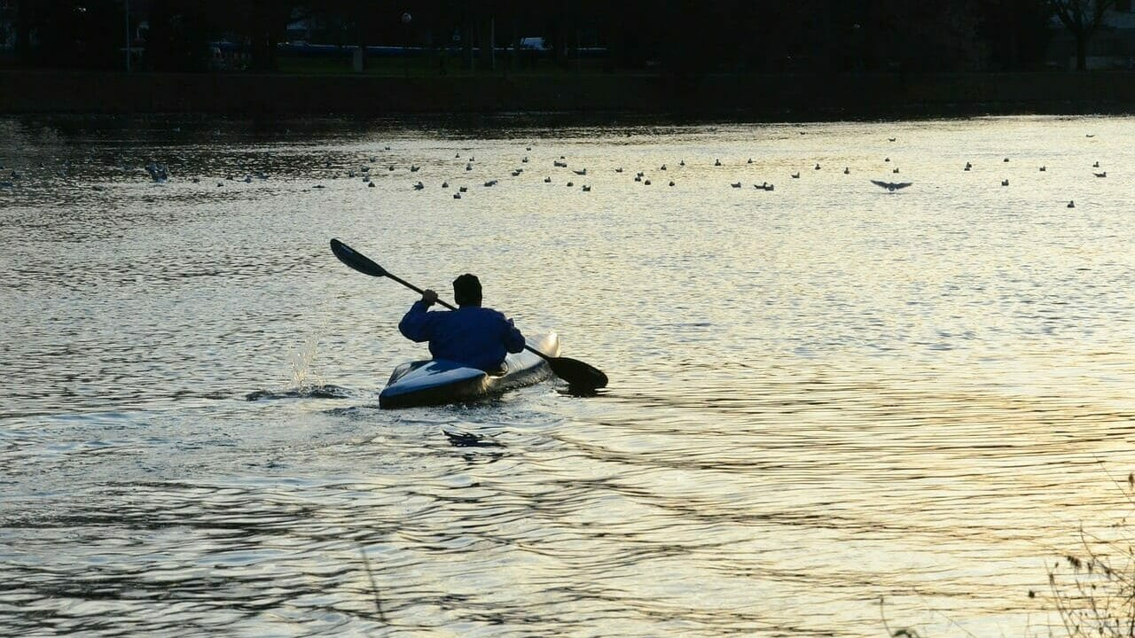 paddle, rowing, boat